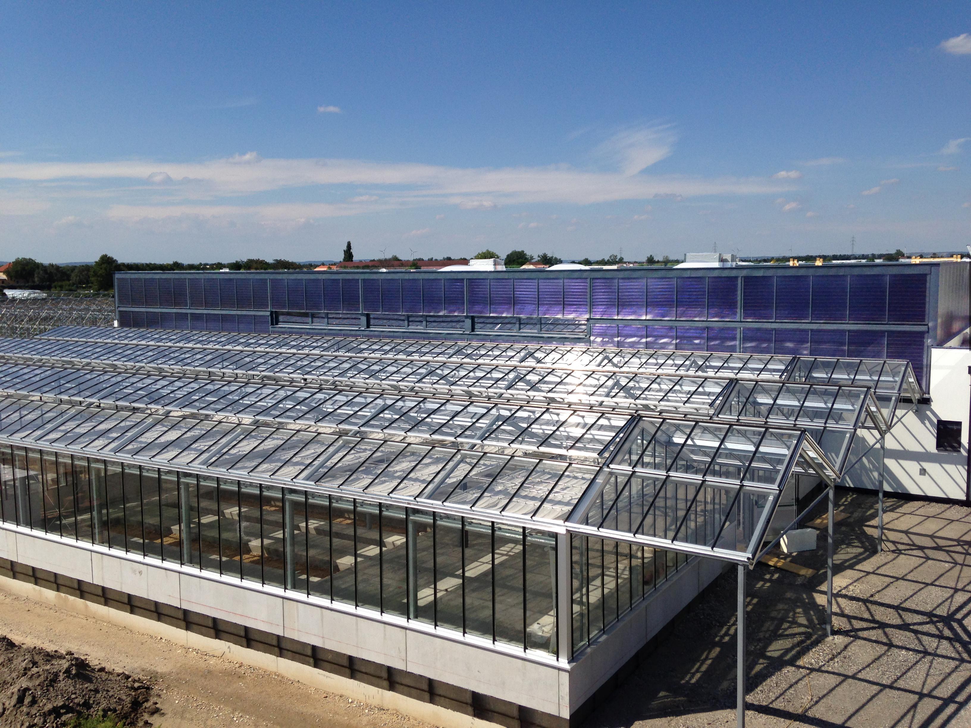 Glashäuser Solaranlage Gärtnerei Bach