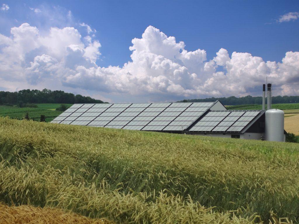 Bio-Solarwärme-Heizwerk in Poysbrunn mit Kollektoren von Gasokol am Dach