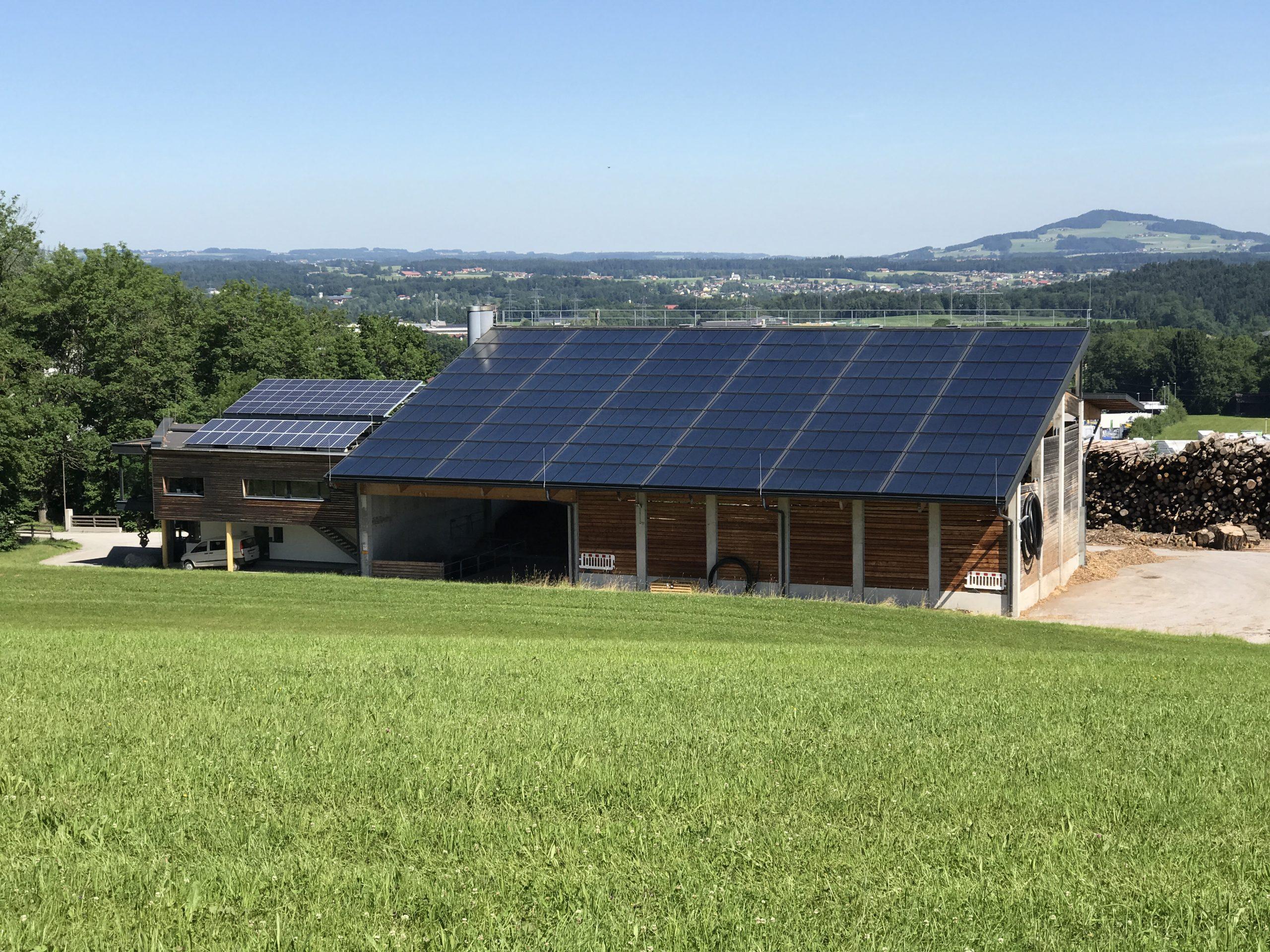 Dach mit Sonnenkollektoren von Nahwärme Eugendorf