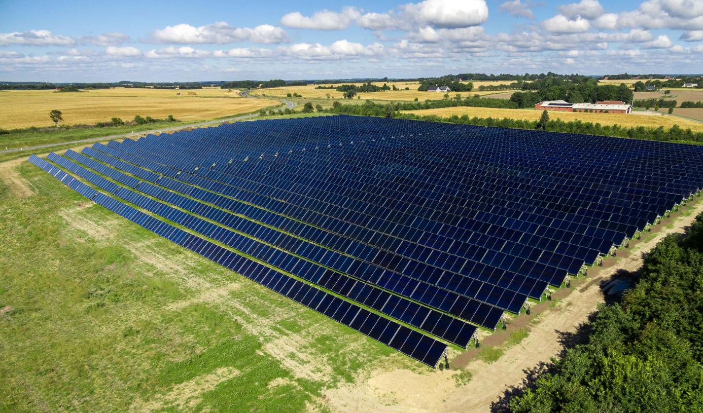 Solare Großanlage auf einer Wiese